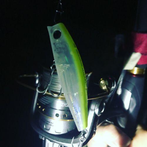 僕が単独釣行にこだわる理由。