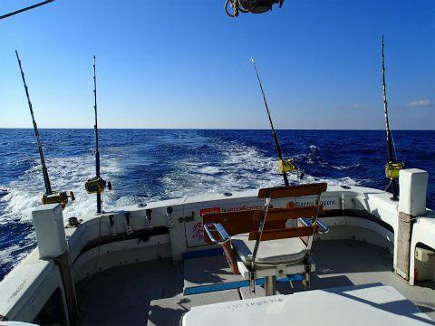 沖縄 フィッシングボートゆりかでトローリング