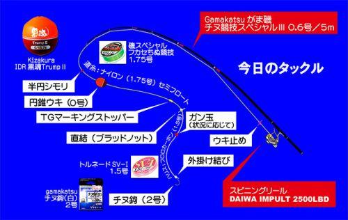 ここの黒鯛は何食ってる?日本海の黒鯛(チヌ)釣り #001