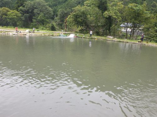 「鱒蔵」よく釣れる釣り場はいいよね その3