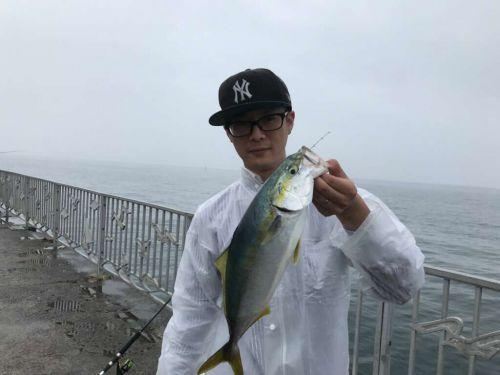 【貝塚人工島】釣り場清掃&釣果の取りに行ってきました!