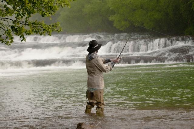 カサゴ釣れてます。<br /><br />